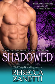 Shadowed cover image