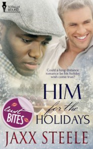 Mini Review – Him for the Holidays by Jaxx Steel